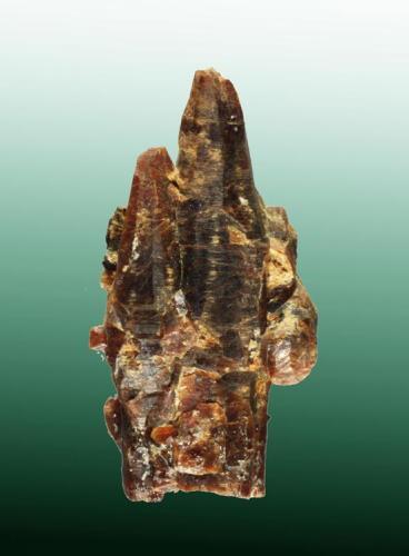 Parisita-(Ce) South Tarkio, Mineral Co., Montana, EUA. Snowbird (m). Agregado de cristales bipiramidales agudos y deformados (ejemplar de 2008). 3,2 x 1,7 x 1,2 cm. / cristal pral.: 3,2 x 0,8 x 0,7 cm. (Autor: Carles Curto)