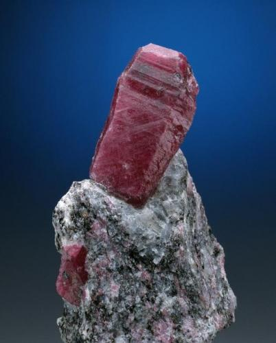 Corindón (rubí) Alipur, Mysore, Karnataka (estado), India. 3,8 x 2,3 x 2,1 cm. / cristal= 1,0 x 1,1 x 0,8 cm. Cristall prismático en matriz de gneiss. Ejemplar obtenido en 1981. (Autor: Carles Curto)