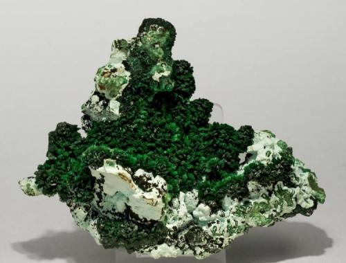 Malaquita cristalizada con Crisocola Mina Rokana, Kitwe, Zambia Tamaño de la pieza: 11.2 × 9 × 2.6 cm. El cristal más grande mide: 0.2 × 0.2 cm. Foto: Ejemplares de Referencia (Autor: Jordi Fabre)