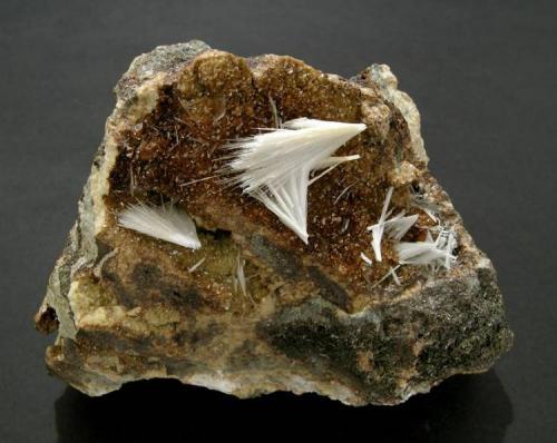 Celestina en Siderita Mina Quien Tal Pensara, Pilar de Jaravia, Pulpí, Almeria, Andalucia, España Encontrada en 1997 Tamaño de la pieza: 7.5 × 5.5 × 5.5 cm. El cristal más grande mide: 1.6 × 0.5 cm. Foto: Minerales de Referencia (Autor: Jordi Fabre)