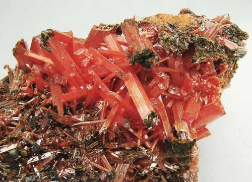 Crocoita Mina Adelaida, Dundas, Tasmania, Australia Encontrada hacia 1974 Tamaño de la pieza: 8.7 × 5.5 × 4.2 cm. El cristal más grande mide: 2.1 × 0.3 cm. Ex colección Oliete. Número 208 Foto: Minerales de Referencia (Autor: Jordi Fabre)