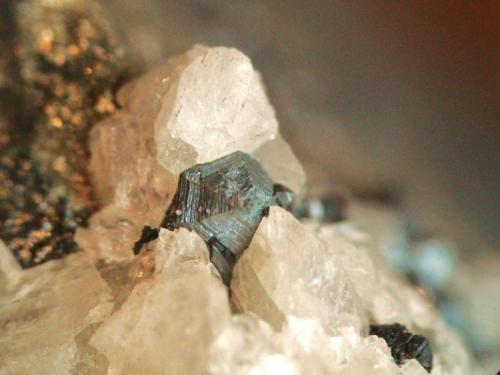 Calcosina Mina las Cruces, Gerena, Sevilla, España Cristal 5mm (Autor: Nieves)