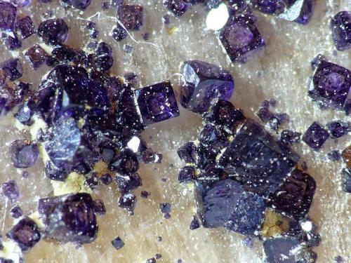 Fluorita Ponteareas, Pontevedra Cristales sobre 0,5mm Cristalización identica a esta: Fluorite no.12 - Goldschmidt (1913-1926) (Autor: Javier MC)