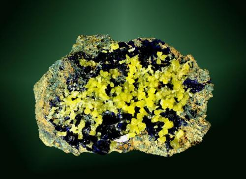 Mimetita + Azurita Touissit, Oujda-Angad (pref.), L'Oriental (wilaya), Marruecos. 3,3x4,9x1,7 cm. / 0,1x0,1x0,1 cm. (cristal pral.) Concreciones y pequeños cristales prismáticos amarillo verdosos, sobre azurita y en matriz. Obtenida en 2009 (obsequio de Pep Gorgas) Ejemplar de 1981 MINDAT ID: 232432 procedente de la col. de Pep Gorgas (num.692) (Autor: Carles Curto)