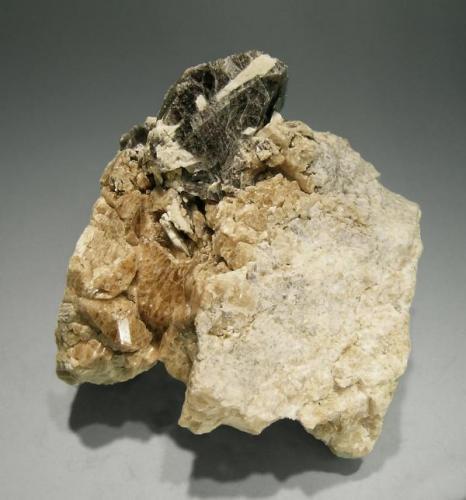 Axinita-(Fe) con Grossularia Cerca de Fermoselle, Zamora (pero ya en Salamanca), España Tamaño de la pieza: 6 x 5 x 6.5 cm.  Cristal de Axinita-(Fe): 2,5 x 2 cm. Colección Jordi Fabre Vista superior (Autor: Jordi Fabre)