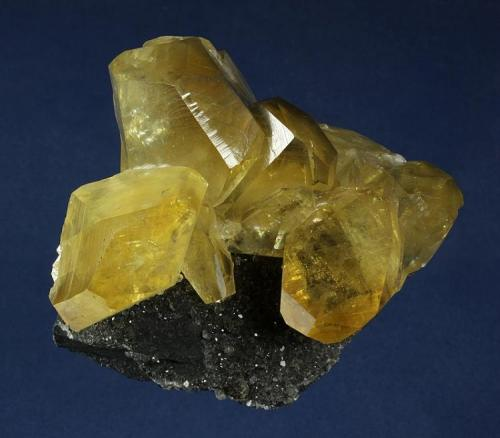 Calcite Daye County, Huangshi Prefecture, Hubei Province, China 91.0 x 83.0 x 43.0 mm  Blocky, lustrous amber-yellow crystals of Calcite to 33 x 26 mm are perched on dark black limestone matrix. (Author: GneissWare)