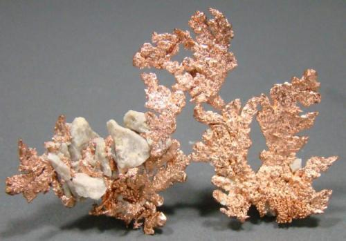 Cobre Morenci, Greenlee, Arizona, USA 7,4 cm (Autor: nimfiara)