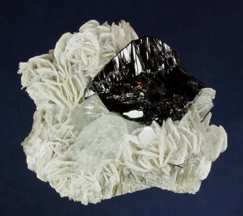 Cassiterite and Beryl on Muscovite Mt. Xuebaoding, Pingwu County,  Mianyang Prefecture, Sichuan Province, China 86.0 x 78.0 x 37.0 mm overall A perfect, lustrous black twin of Cassiterite, measuring 39 x 33 x 17 mm, is perched on a pair of pale blue Beryl crystals to 27 x 9 mm, all nestled in a matrix of Muscovite crystals to 18 mm across. No damage. (Author: GneissWare)