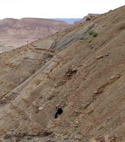 Afloramientos con trilobites en el área de Alnif. Fot. K. Dembicz. (Autor: Josele)
