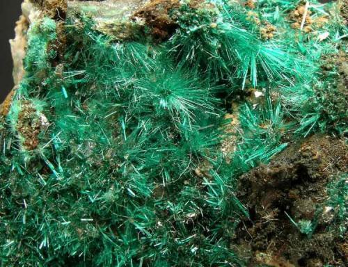 Brochantita Goulmina, Er Rachidia, Marruecos Encontrada el año 2003 Detalle Foto: Minerales de Referencia (Autor: Jordi Fabre)