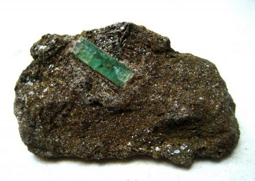 Beryl var. Emerald in mica schist Leckbachrinne, Habach Valley, Salzburg, Austria 13 mm crystal on a 50 mm specimen (Author: Tobi)