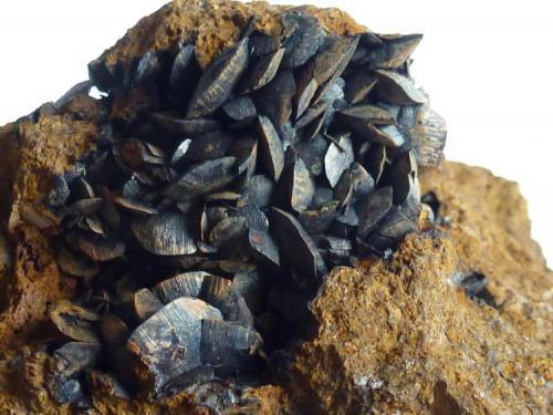 Siderita en Limonita<br />Minas de hierro de Ojos Negros, Ojos Negros, Comarca Jiloca, Teruel, Aragón, España<br />3 x 4 cm. la zona de cristales<br /> (Autor: javier ruiz martin)