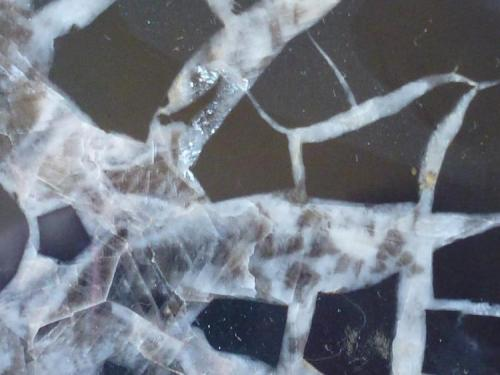 Septaria Deba, Guipúzcoa, España  Detalle de la pieza anterior (Autor: javier ruiz martin)