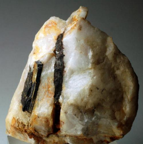 Hübnerita en matriz de cuarzo Minas de San Finx - Vilacoba - Lousame - A Coruña - España 60 x 50 x 35 mm (Autor: Joan Martinez Bruguera)
