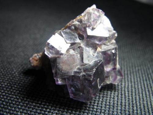 Fluorita Namibia 3 cm. de altura, según la posición en la imagen Agregado de cubos de fluorita de color violeta con algunos reflejos verdes.  No es UV-fluorescente. (Autor: prcantos)