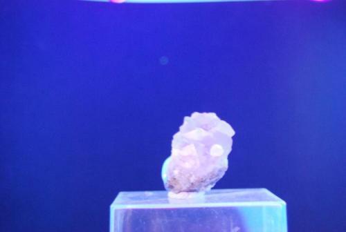 Fluorita Artenara 3 cm Bajo UV larga (Autor: Jose Bello)