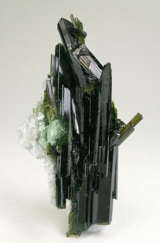 Epidota con anfíbol (variedad Byssolita) Knappenwand, Untersulzbachtal, Salzburg, Austria Tamaño de la pieza: 6 × 3.9 × 2 cm. El cristal más grande mide: 4.4 × 0.5 cm. Encontrada en Marzo del 2009 Foto: Ejemplares de Referencia (Autor: Jordi Fabre)