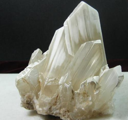 Gypsum (Var: Selenite) Laguna del Rey in Coahuila, about 250km east of Naica. 13 x 11 cm (main crystal measuring 10 cm). From my personal collection (Author: Antonio Alcaide)