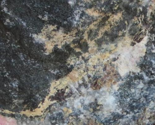 Pirocloro, Neptunita Intrusión de Ilímaussaq, Narsaq, Groenlandia encuadre: 3,5 x 2,5 cm detalle del anterior Pirocloro: pequeñas vetas amarillas con brillo ceroso, llevando dentro pequeñas cristales de neptunita de color rojizo muy oscuro. (Autor: Kaszon Kovacs)