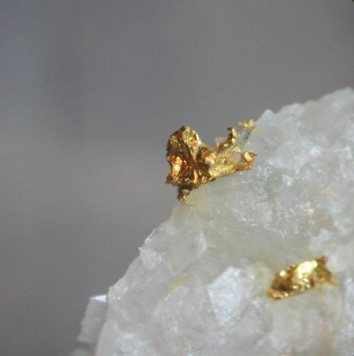 Oro Casas de Don Pedro, Sierra de las Chimeneas, Badajoz, Extremadura, España cristal 2mm (Autor: Nieves)