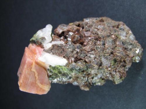 Calcita Minas de Cala, Huelva, Andalucía, España 1'5 x 2 cm. (x 1'1 cm. de grosor) el cristal principal; pieza de 7 x 5 cm. Un gran cristal de calcita de color salmón con exfoliación visible en matriz formada por granates bien cristalizados y epidota. (Autor: prcantos)