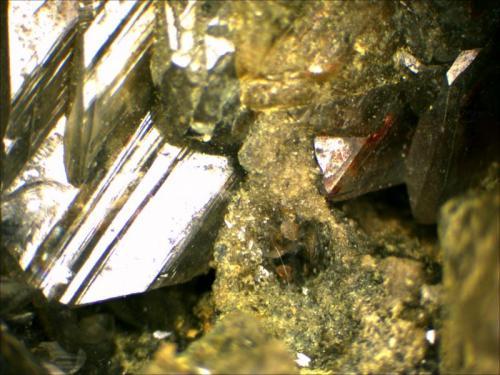 Anglesite Monteponi Mine, Cagliari, Sardegna, Italy 25 x 4 mm (Author: Mark Ost)