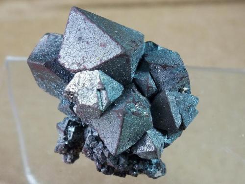 Hematite Volcán Payún Matrú, Malargüe, Mendoza, Argentina 3,5 x 3 cm Hematite Pseudomórfico de Magnetita (Variedad Martita) (Autor: molsina)