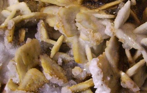 Barita, calcita Minas El Conjuro, Busquístar, Granada, Andalucía, España 9,5 x 6,5 x 4 cm Los cristales son originamente azules, tabulares de 1,5 cm y con cierta transparencia, pero están recubiertos por una segunda generación de barita blanca. Curiosamente presentan fuerte fluorescencia anaranjada bajo onda corta como ha mostrado D:C:M: en una pieza del mismo yacimiento. ¿Se debe a la calcita? Pequeños cristales azulados de calcita entre los de barita. Sobre el recubrimiento blanco de barita hay una tercera generación de pequeños cristales tabulares de barita -no reaccionan al ácido-. La matriz es de limonita y óxidos diversos. (Autor: Antonio Alcaide)