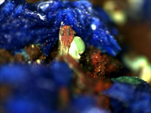 Malachite M'Cissi, Er Rachidia, Morocco 1mm x 1mm (Author: Mark Ost)