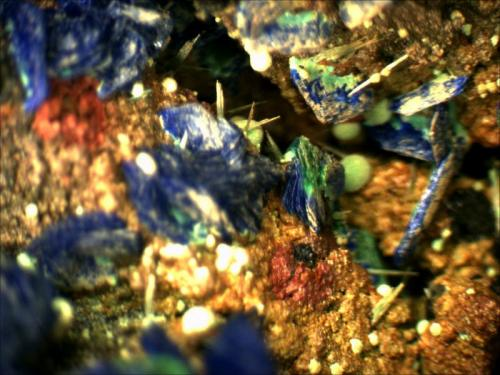 Azurite and Malachite on Limonite covered Quartz. M'Cissi, Er Rachidia, Morocco 5mm x 5mm (Author: Mark Ost)
