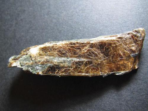 Lamprofilita Lovozero, Península Kola, Rusia 6 x 1'5 cm. Vista posterior del mismo fragmento. (Autor: prcantos)