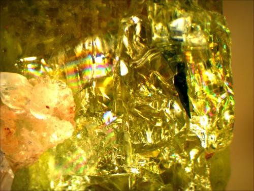 Fluorapatite Cerro de Mercado Mine, Victoria de Durango, Durango, Mexico 1.5cm x 1cm x1cm (Author: Mark Ost)