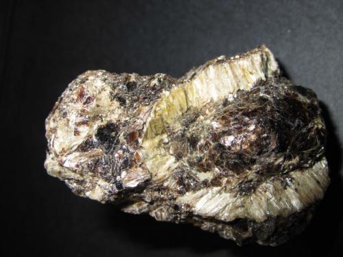 Antofilita y flogopita Heřmanov, Velké Meziříčí, Vysočina Region, Moravia, República Checa 6 x 4 Una corona de cristales claros de antofilita en matriz de flogopita dorada. (Autor: prcantos)