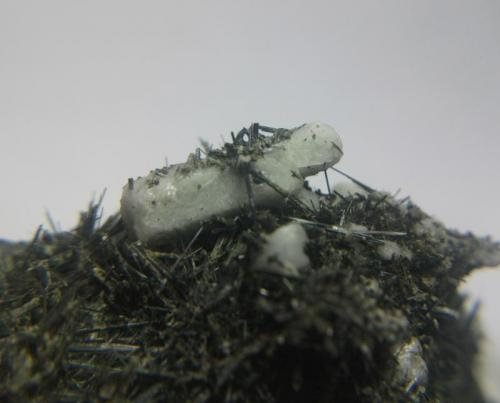 Apatito y actinolita Cantera Juanona, Antequera, Málaga, Andalucía, España cristal de 1 cm (Autor: Nieves)