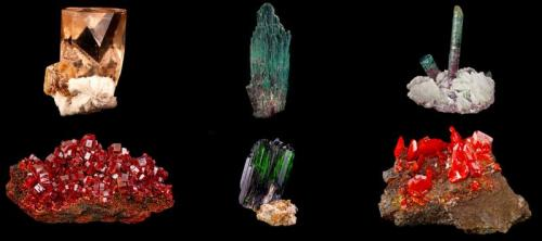 Six more samples from the Hoppel Collection - a Topaz, two Tourmaline, a Vanadinite, a Vivianite and a Wulfenite. (Author: BlueCapProductions)
