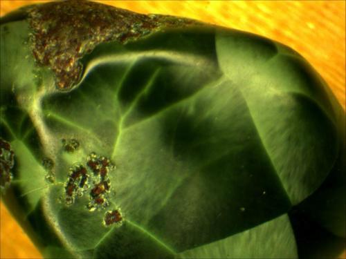 Chlorastrolite Isle Royale, Upper Peninsula Michigan, USA .5cm x .75cm (Author: Mark Ost)