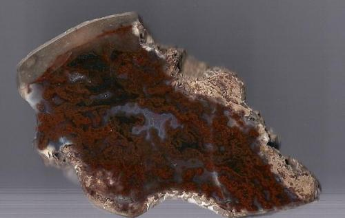 Agate Scotland, UK 7 x 4cm (Author: James)