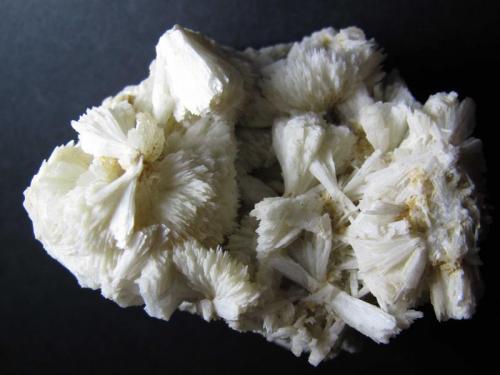 Prehnita Cantera Minera I, Lebrija, Sevilla, Andalucía, España 6 x 5 cm. Prehnita de color blanco hueso con estructura en agregados radiados. (Autor: prcantos)