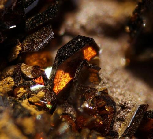 Jarosita Barranco del Jaroso. Tunel del Arteal. Almería. España. Altura cristal 1,2 mm (Autor: Foro FMF)