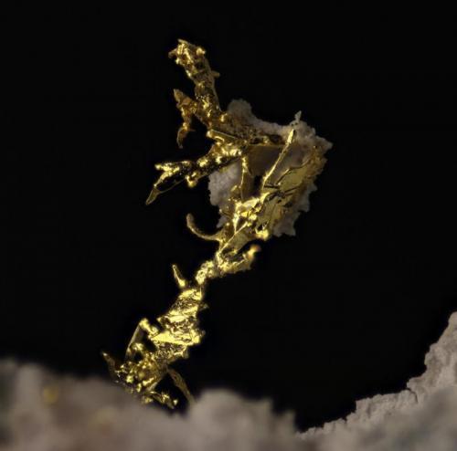 Oro Nevada. USA. 4mm de altura del oro La calidad esta comprometida y los reflejos que aparecen en varios sitios dejan mucho que desear. Al final el oro tiene bastantes sombras y esta oscurecido. (Autor: Oscar Fernandez)