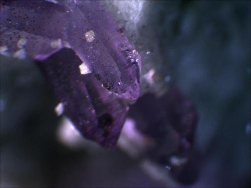 Quartz Var. Amethyst Cava Capurru, Osilo Sassari, Sardegna, Italia 1cm x .5cm x .5cm (Author: Mark Ost)