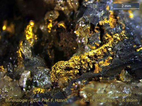 Gold, galena, quartz La Gardette, Oisans, Isère (France) (Author: Roger Warin)