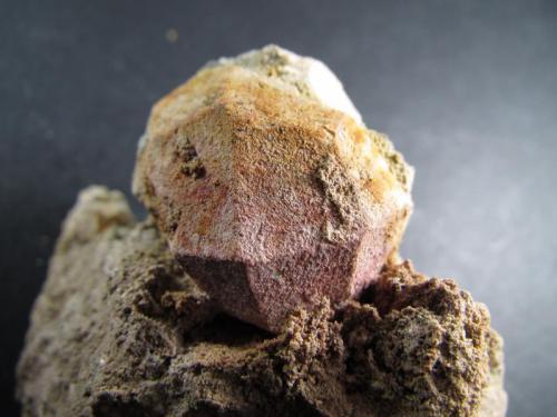 Leucita Orchi, Conca della Campania, Complejo Volcánico de Roccamonfina, Caserta, Campania, Italia 2'5 x 2'5 x 3 cm. el cristal Un cristal de leucita teñido por hematites.  La cara frontal, muy bien formada mostrando varios vértices cuaternarios del trapezoedro, se prolonga por la parte trasera en lo que parece otro cristal trapezoédrico mucho peor formado. (Autor: prcantos)