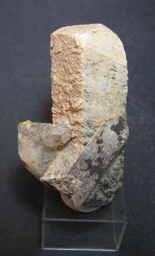 Microclina y cuarzo Erongo, Namibia 18 x 18 x 51 mm. el cristal; 3 x 5'5 cm. la pieza completa en esta vista Un prisma rómbico con unas caras granuladas y otras estriadas.  Cuarzos en la base.  No tengo claro que se trate de una macla de Baveno. (Autor: prcantos)