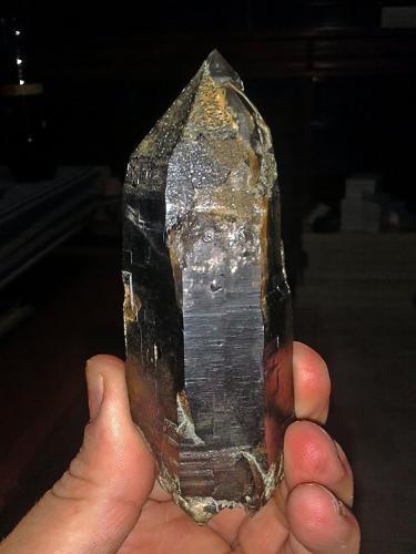 Cuarzo (variedad ahumado) Cillarga, Ponteareas, Pontevedra, Galicia, España 11cm x 4,5cm x 4cm (Autor: Javier MC)