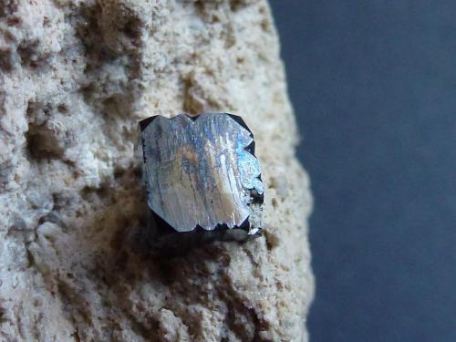 Bixbyita Thomas Range, Suab Co., Utah, USA El cristal tiene 0,4 x 0,3 cm.  Detalle (Autor: javier ruiz martin)