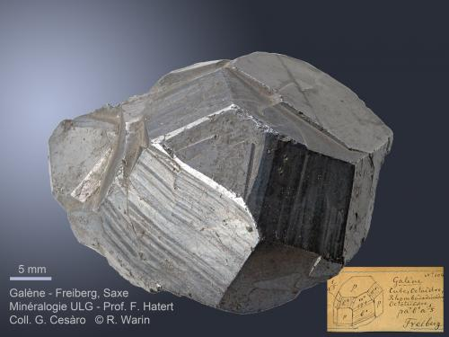 Galena Freiberg, Saxe, Germany 4.3 cm Discovery of the {551} trioctahedron. (Author: Roger Warin)