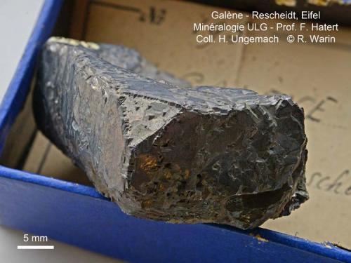 Galena Rescheidt, Eifel, Germany 4 cm (Author: Roger Warin)