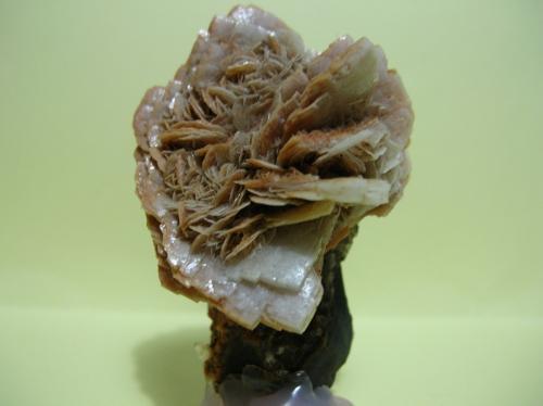 Barita Mina Victoria, Cabezo de San Ginés, El Estrecho de San Ginés, Sierra Minera de Cartagena-La Unión, Cartagena, Murcia, España 6 x 4 cm (Autor: Pedro Conesa)