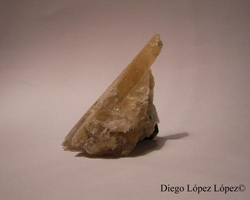 Yeso Galera, Granada, Andalucía, España. largo 2 cm , alto 5.5 cm , ancho 2 cm (Autor: DiegoToledo)